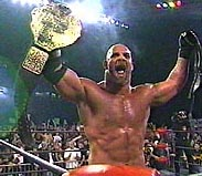 Goldberg Holding Belt